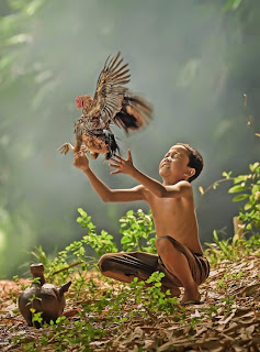 Pembela anak yatim dapat ganjaran syurga