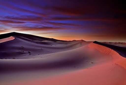 Morning in the sahara by ablok