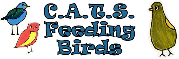 C.A.T.S. Feeding Birds