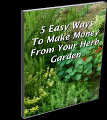 Make Money From Your Herb Garden