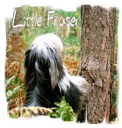 Little Fraser