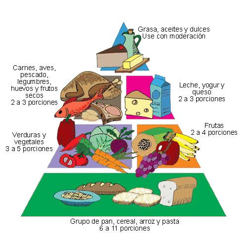 C mo me gusta comer bien febrero 2011 - Informacion sobre la fibra vegetal ...