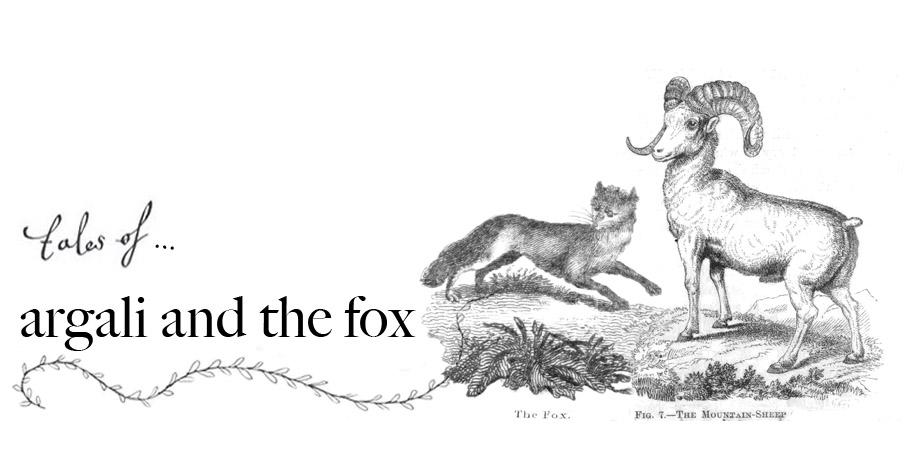 Argali and The Fox
