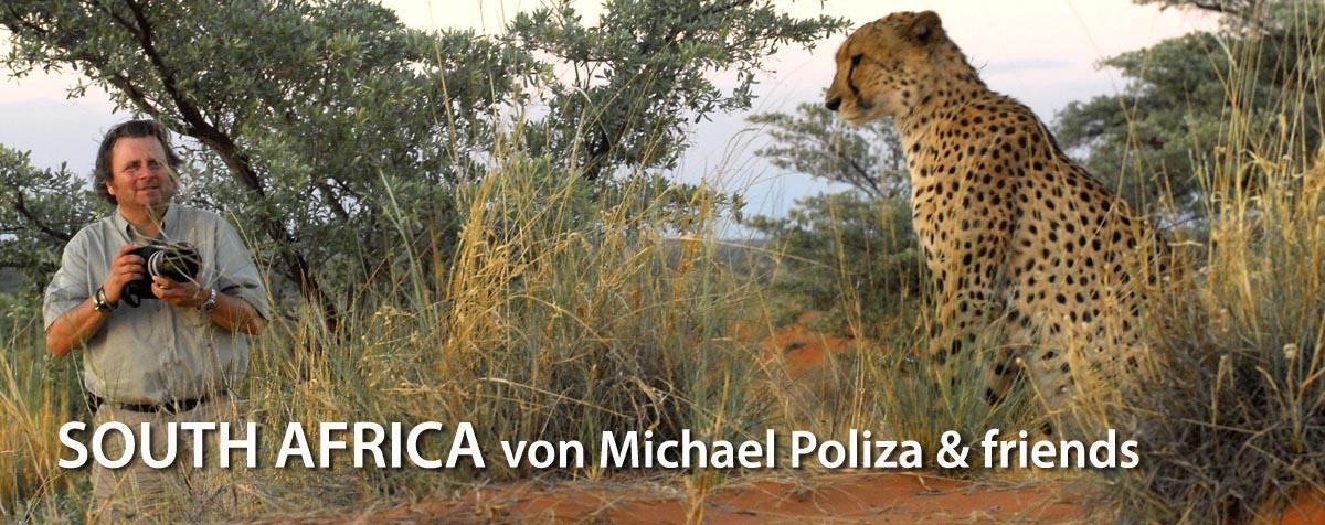 SOUTH AFRICA von Michael Poliza