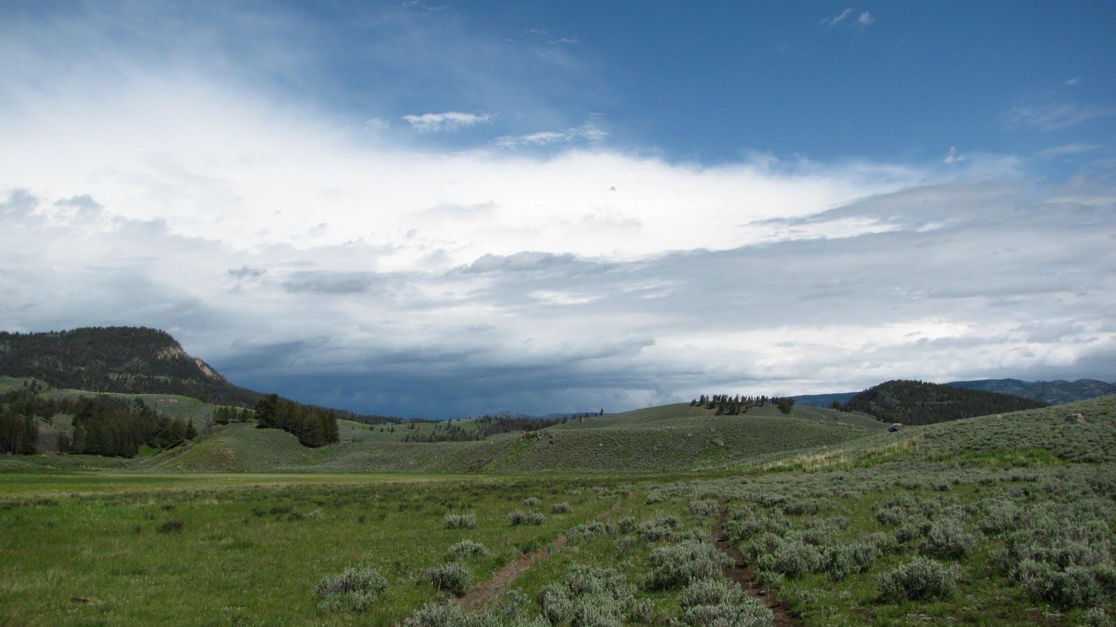 Yellowstone Summer: Garnet Hill Loop Trail