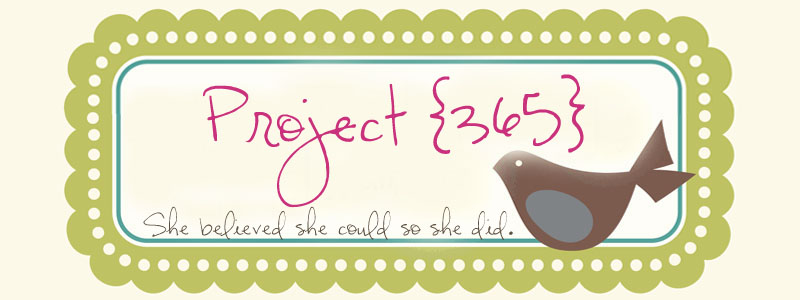 Project {365}