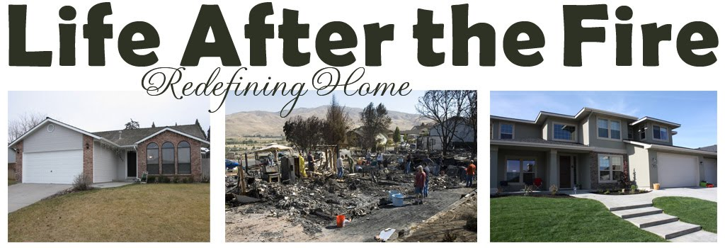 Life After the Fire