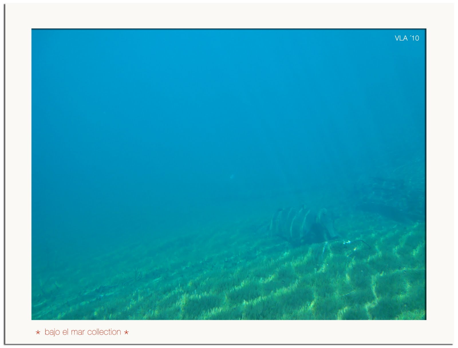 Vicky Santamarina ::: bajo.el.lago