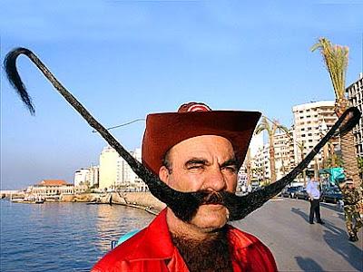 Moustache guidon
