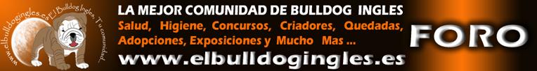 ElBulldogIngles