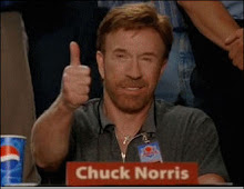 Blog aprovado por Chuck Norris