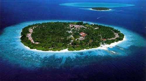 Real Beauty Of Coral Islands Maldives Premlal