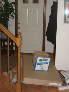 empty boxes (aka 'cat fort') by the front door