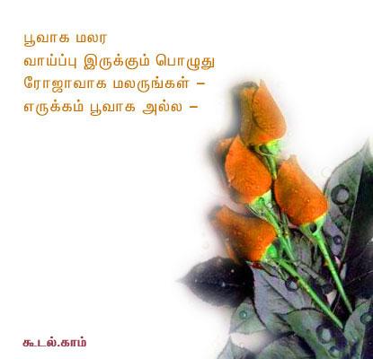 Tamil Kavithai SMS