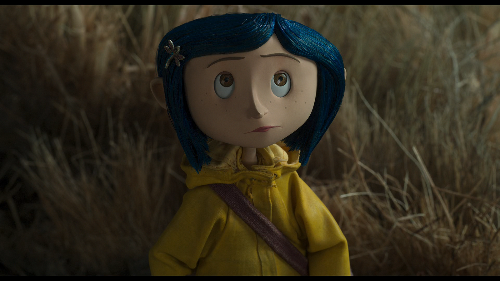 Joining Henry Selicku0027s Coraline are Pixaru0027s transcendental masterpiece Up and Wes Andersonu0027s brilliant adaptation of Roald Dahlu0027s novel Fantastic Mr Fox. & The Film Emporium: Review: Coraline and the Secret Door (Henry ...