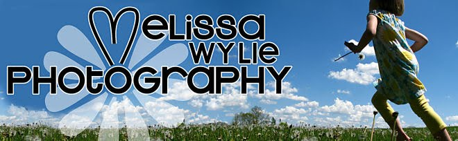 Melissa Wylie Photography