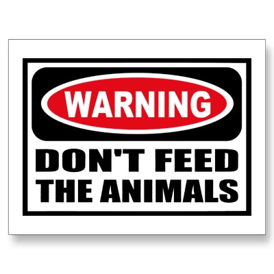 Dont Feed The Animals Wealthy Man