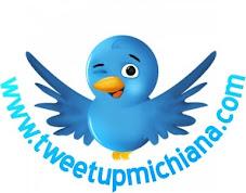 Tweetup Michiana Networking Party