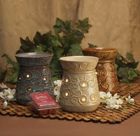 Check out my Scentsy blog