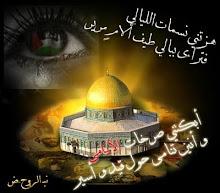 فلسطين الحبيبه