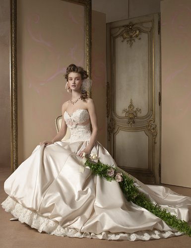 Wedding  Gown Fashion