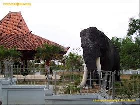 http://4.bp.blogspot.com/_hjNndW75NeY/TQY2PnsLGCI/AAAAAAAAA_o/BWvePThmlMo/s1600/trinil-museum-03.jpg