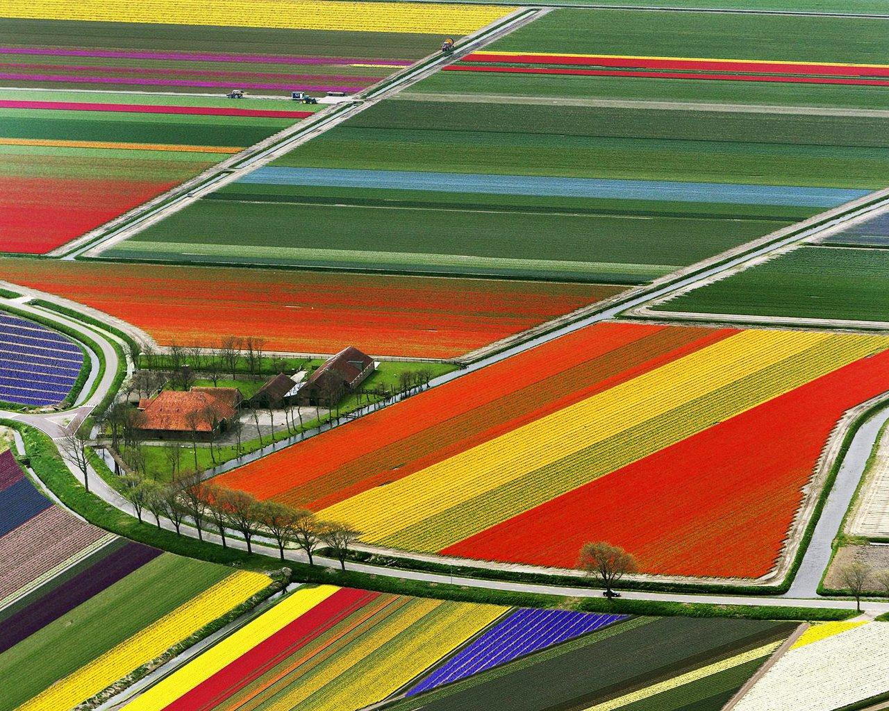 Wallpaper ธรรมชาติ สวยงาม