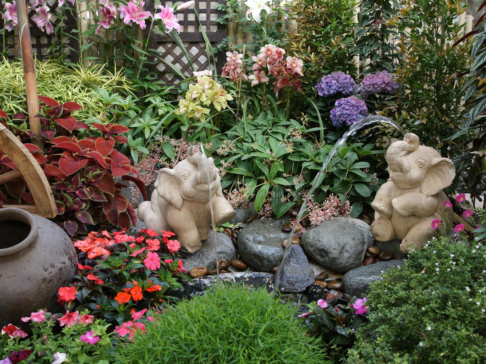 http://4.bp.blogspot.com/_hl42lHRHNXI/TU4obxCDJyI/AAAAAAAAAFg/KwGW9T-z_Gs/s1600/flower_garden-dsc00910.jpg