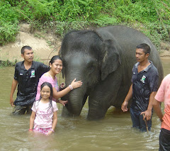 Mawar the Elephant