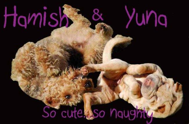 Hamish & Yuna