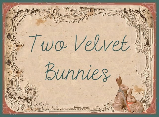 Two Velvet Bunnies