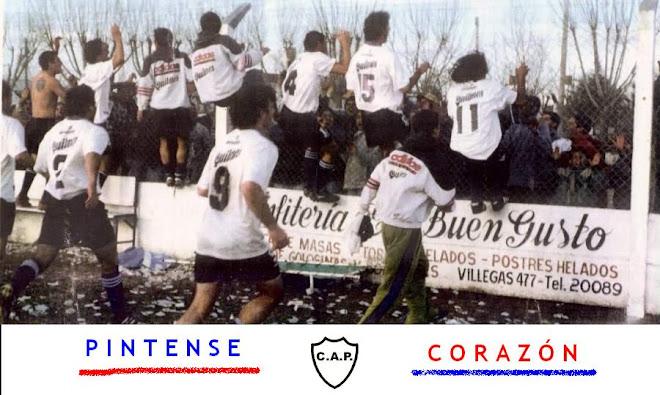 PINTENSE AÑO 2002