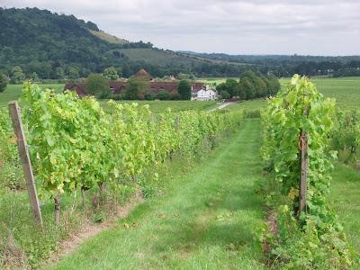 Denbies+English+Vineyard+and+Wine+Estate+London+Dorking