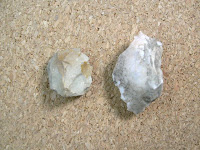 Lithics from the Carson site