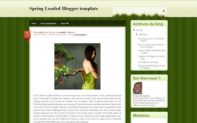 Hébergez les images de votre modèle sur Blogger: Bande passante(bandwidth) illimitée