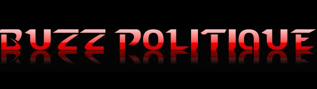 Buzz politique : Clearstream, Villepin, Sarko, Aubry, burqa