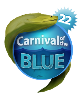 carnival of the blue 22