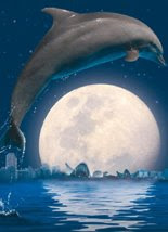 las noches del oceanografico valencia.Espectaculo delfines en el delfinario