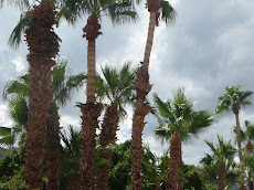 A cloudy day in Palm Springs?  Yes!