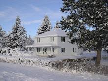 Mocassin Winterland