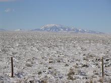 Mt Elk