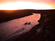 Medicine Bow River