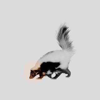 Dreamboy.jpg