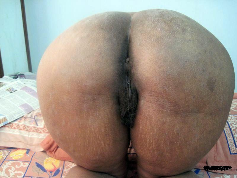 porn for free hairy bush anal casting