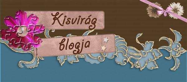 kisvirág blogja