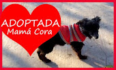 Mamá Cora ADOPTADA!