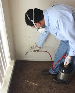 Bed bugs provide one of the few legitimate times where baseboard treatment is justified.  Note the blood smears on the wall where residents crushed bed bugs.