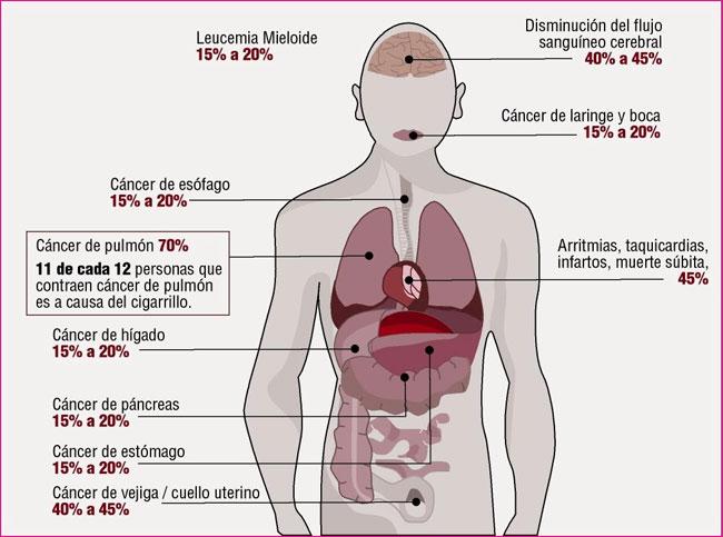 Como librar de la dependencia de nicotina