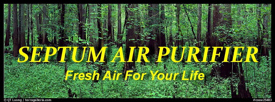 SEPTUM AIR PURIFIER