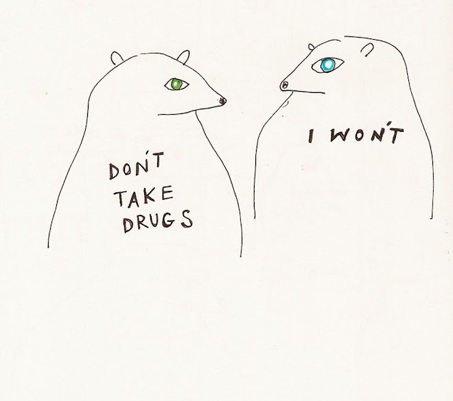 bears don't do drugs . . .